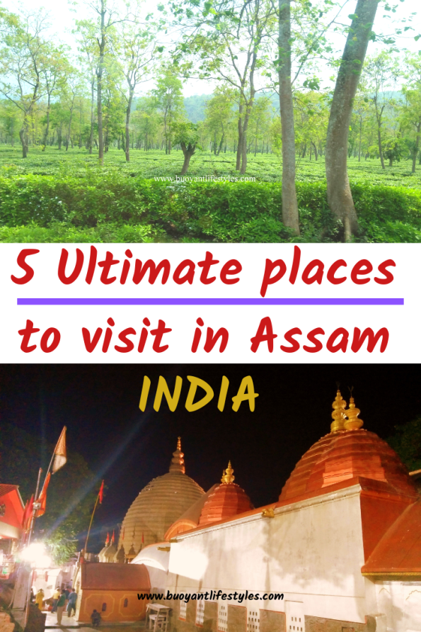 Assam travel Guide + Best places to visit in Assam, India + Where to visit in Assam, India #Assam #indiatravelguide #assamtravelguide