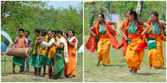 #manasspringfestival #assam #guwahatiblogger #travel #sustainabletourism