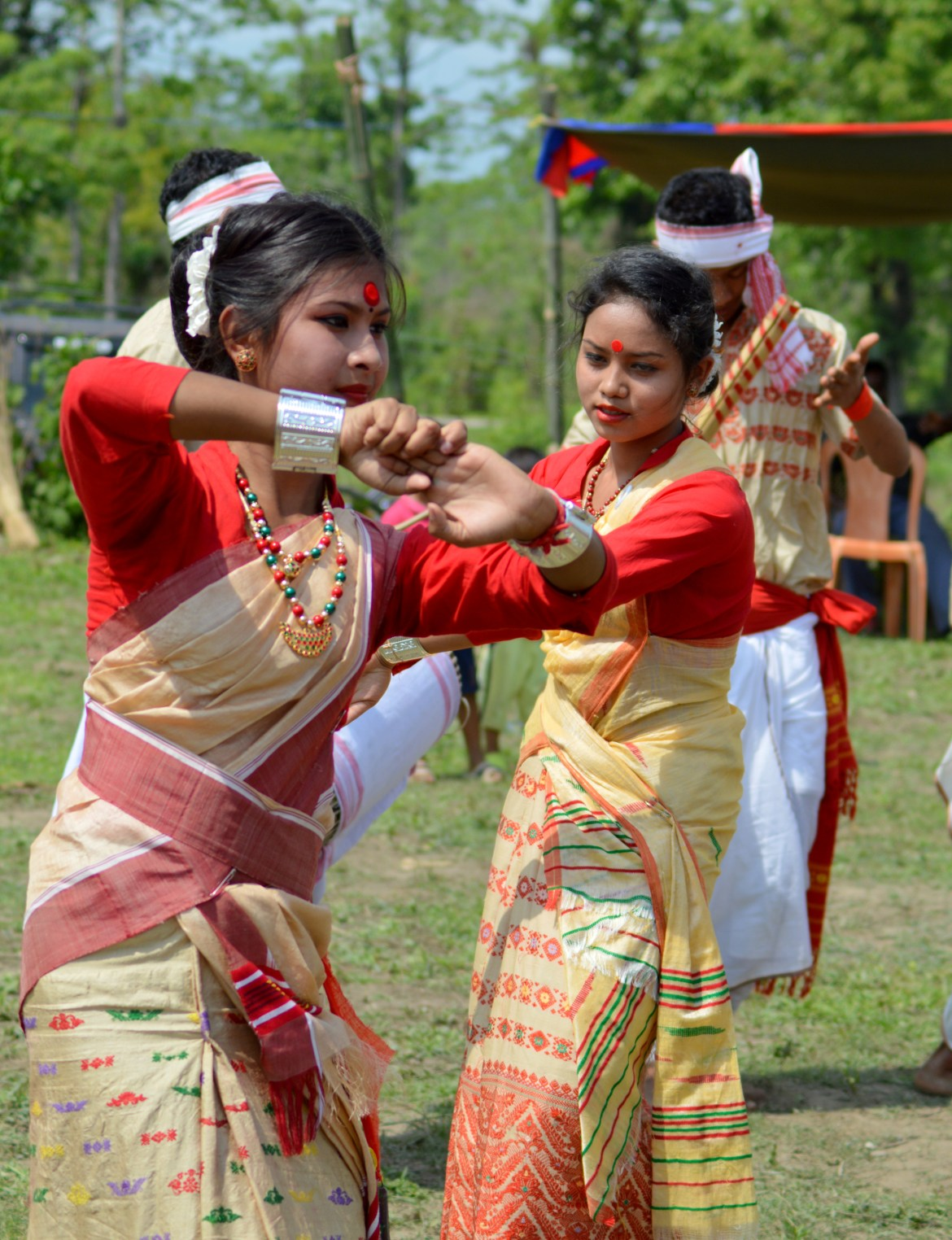 10 Days Complete Itinerary for Assam , India