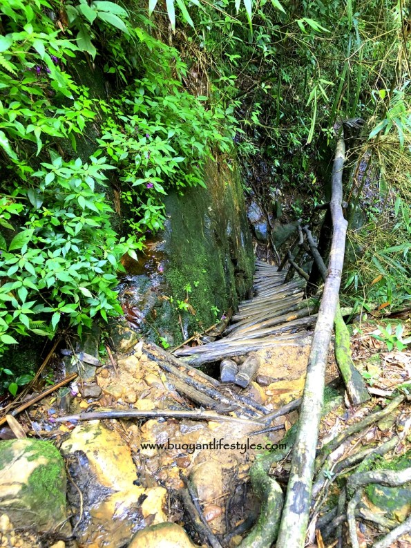 Wei Sawdong waterfalls cherrapunjee #cherrapunjee #meghalaya #weisawdong #waterfalls #northeastindia + Wei Sawdong waterfalls + Meghalaya + Cherrapunjee tourist spot