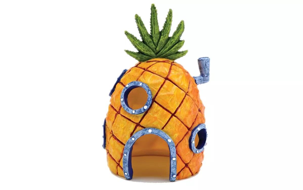 Akvaryum SpongeBob Evi