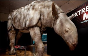 Extreme Mammals Are Coming To The Los Angeles NHM May 14th-September 10th