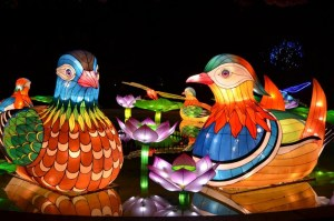 The Chinese Lantern Festival Is Open November 15th – January 6th!