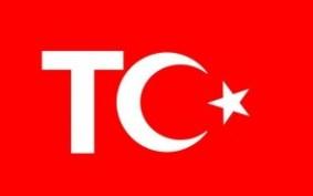 01-TC-295x185