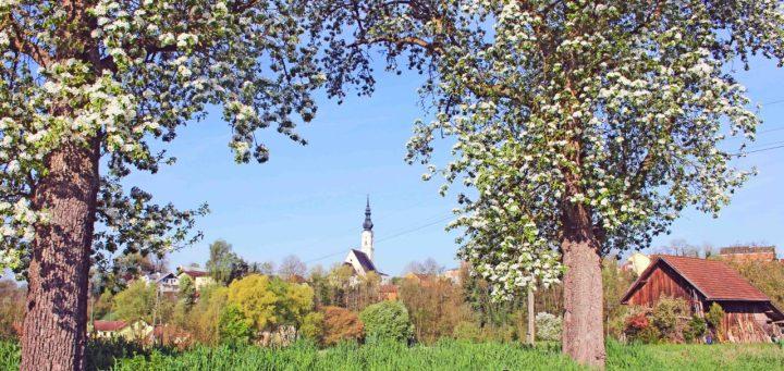 Frühling in Obernberg