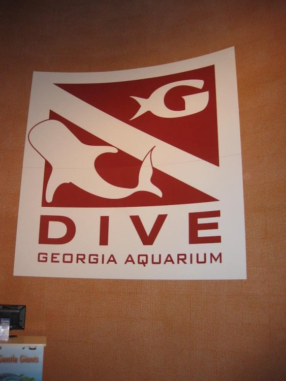 Georgia Aquarium DIVE
