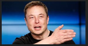 Elon Musk: Politicians 'who stole our liberty' should be 'tarred, feathered & thrown out of town!'