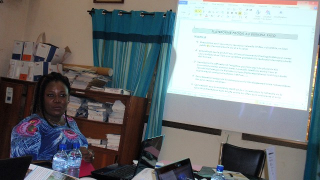 Sylviane Yaméogo du PNE présentant les statuts de la PGIS-BF aux membres du groupe noyau