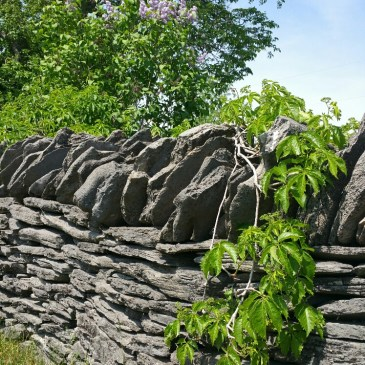 The Stone Fence