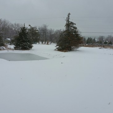 Our first winter storm