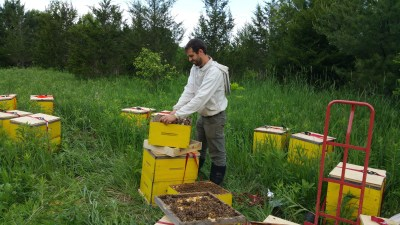 Andrew with bees2
