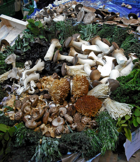 Mushroom stall at the Borough Market