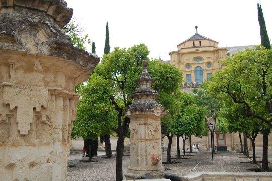 Patio de los Naranjos, Cordoba, Spain