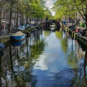 Shoulda, Coulda, Wouldn't: Amsterdam