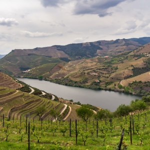 Chasing World Heritage and drinking wine: #123 (Douro Valley)