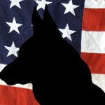 column_NEW-DOGS-ON-MEMORIAL-DAY