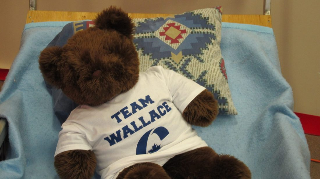Mascot Tory Bear