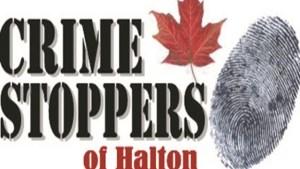 CrimeStopper_Logo