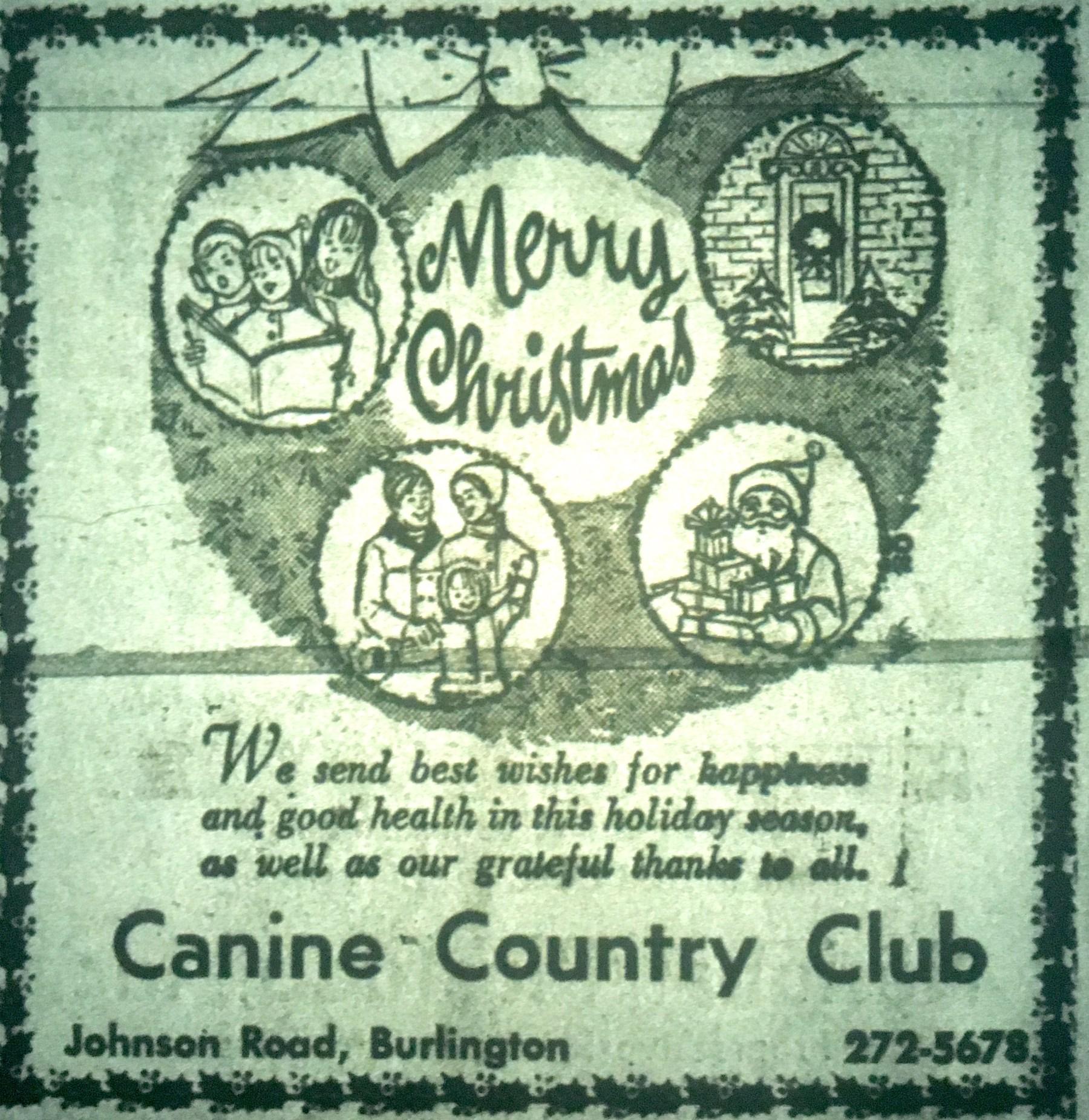 Canine Country Club, Burlington MA