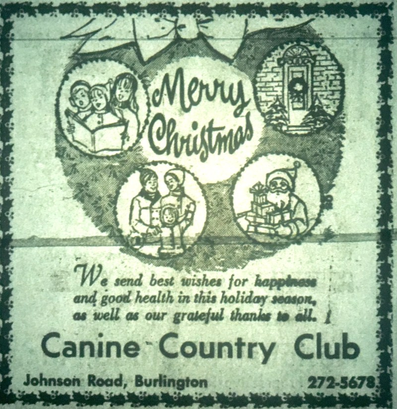 Canine Country Club, Burlington MA
