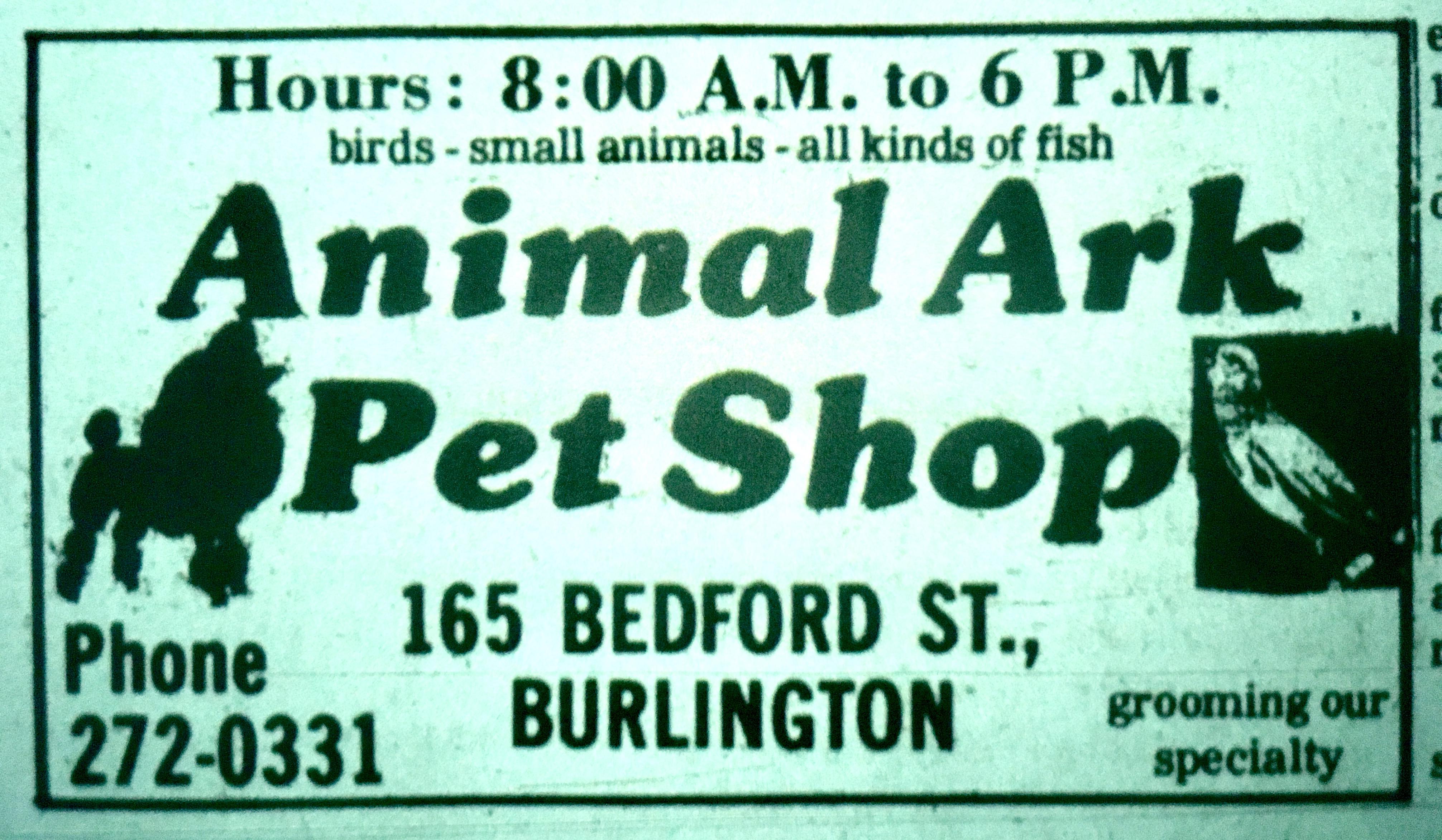 Animal Ark Pet Shop, Burlington MA