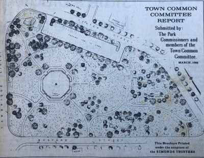 Town Common Committee report