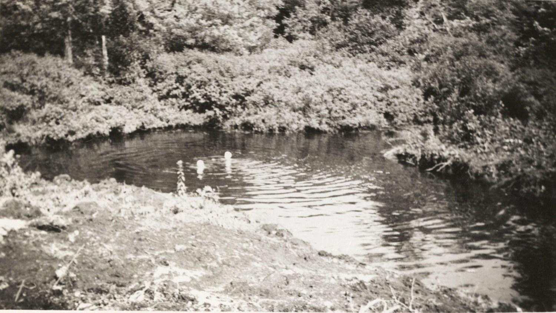 Swimming in pond, Kent Cottage, Burlington MA