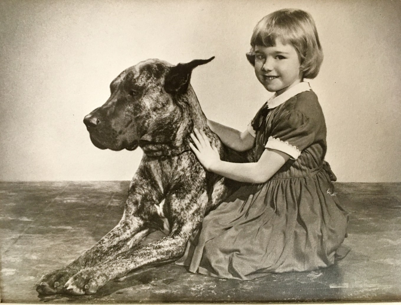 Alouette with Great Dane