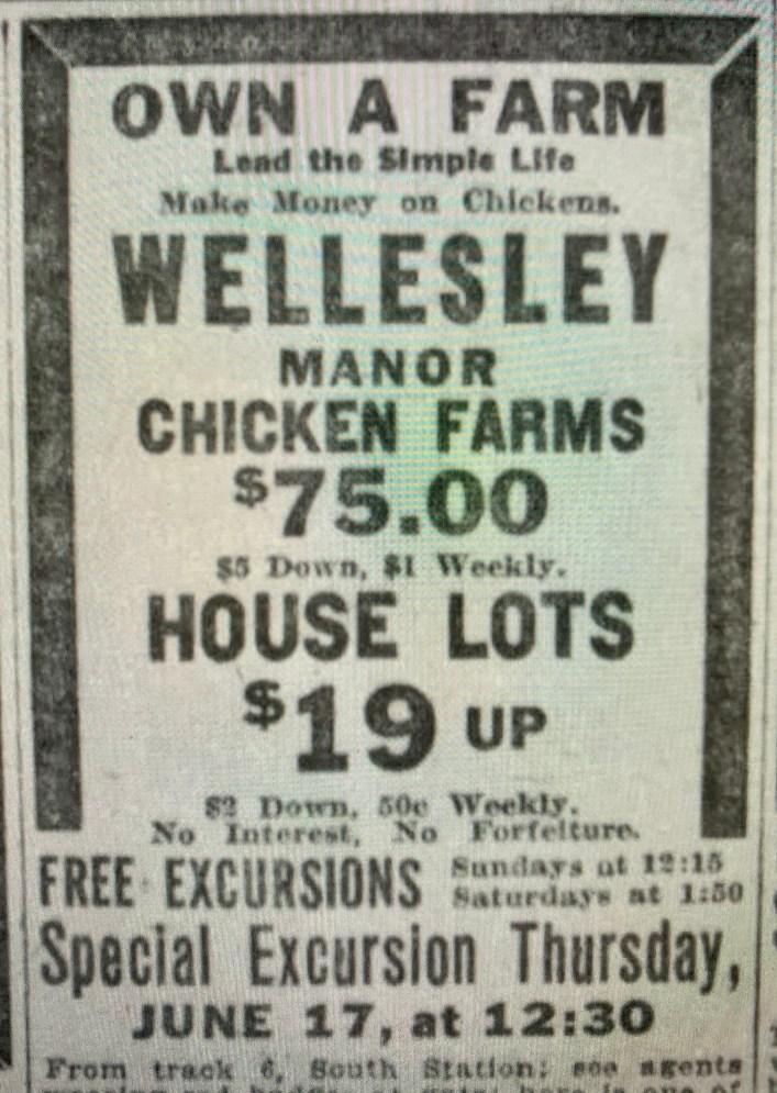 Wellesley 1916 ad