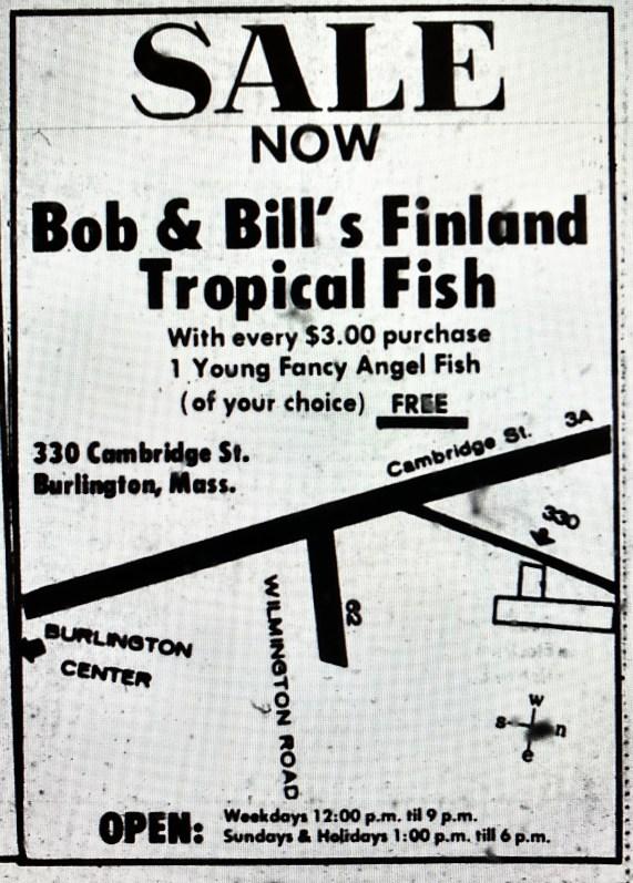 Finland Tropical Fish ad Burlington MA 1971
