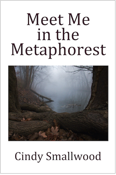 cover to Meet Me in the Metaphorest