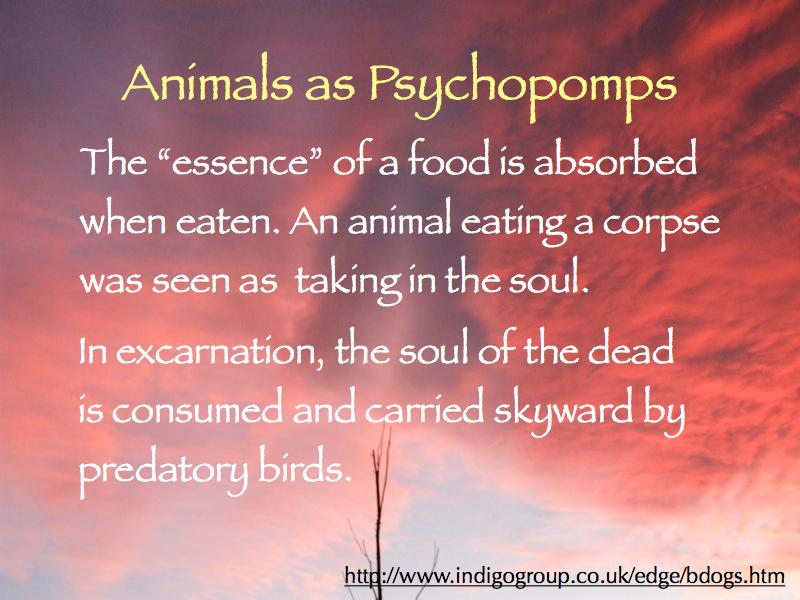psychopomps-2015_800x600-005