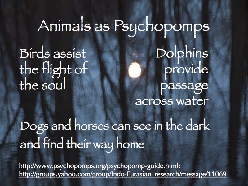 psychopomps-2015_800x600-006