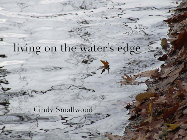 cover to Living on the Water's Edge