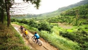 ချင်းမိုင်မြို့မှ Green Bike စက်ဘီးနင်းအဖွဲ့တစ်ဖွဲ့(Internet)