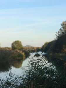 avalon marsh south drain Glastonbury Tor in distance