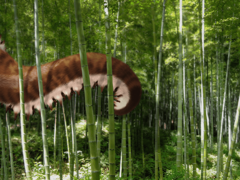 Forest Tentacle Monster