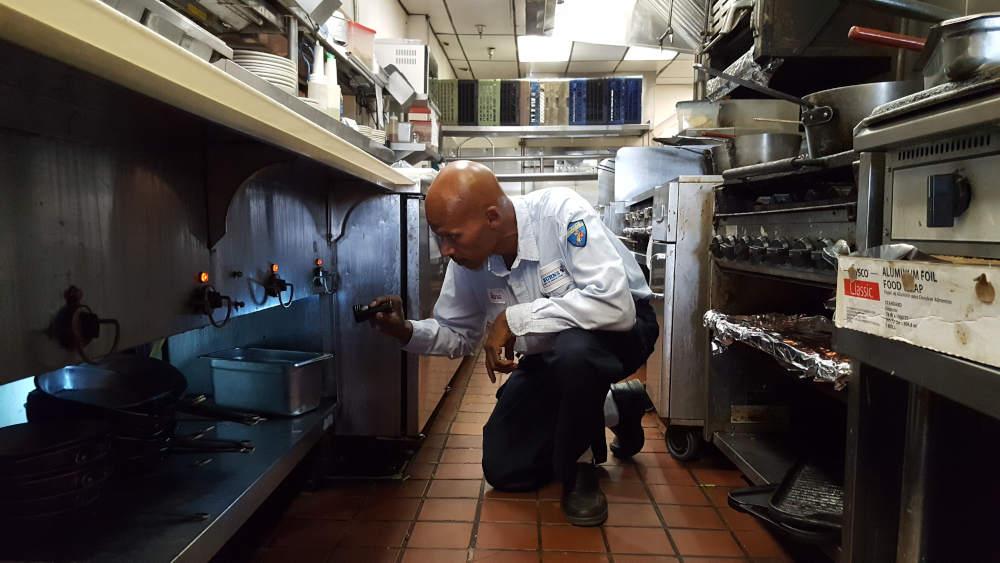 Burns Pest Elimination technician inspecting restaurant kitchen.