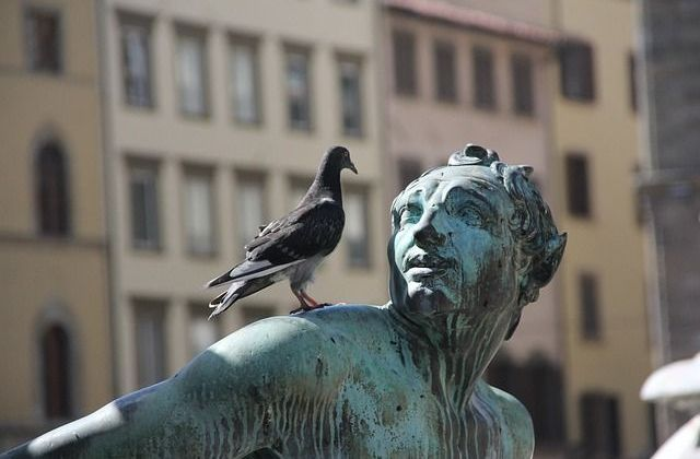 Statue with a bird on it.