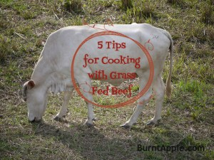 cooking with grass fed beef