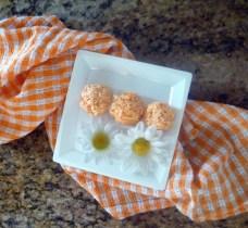 apricot recipe