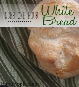 Under One Hour White Bread Recipe