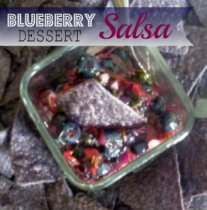 Blueberry Salsa Dessert