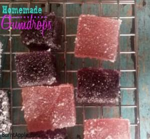 Homemade Gumdrops