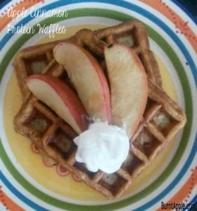 Apple Cinnamon High Protein Waffles