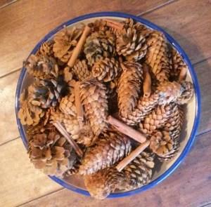 Cinnamon Pinecones
