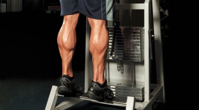 calf workout