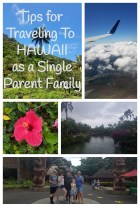 hawaii single parent