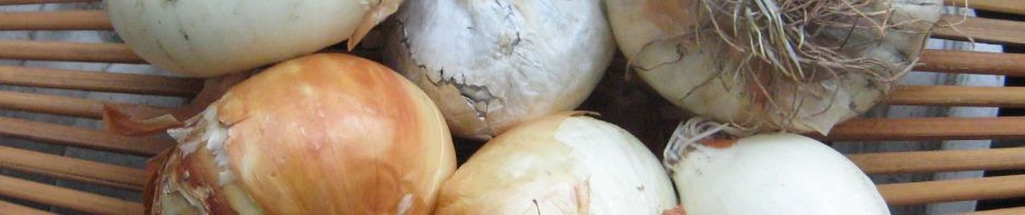 Noonday Onions