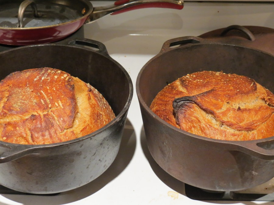 Finished miches in dutch ovens